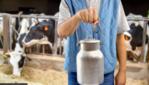 Обичате Ли Мляко? Вижте Ползите И Вредите Му За Здравето!