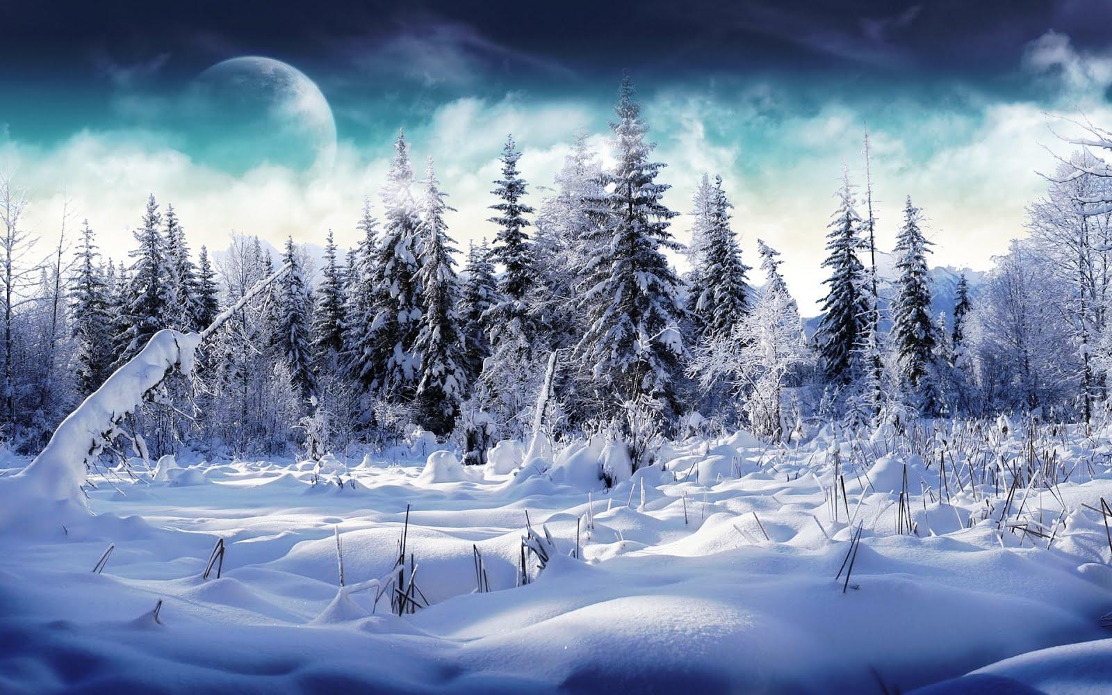 Интересно и Полезно: Вижте как да остане здрави през зимата!
